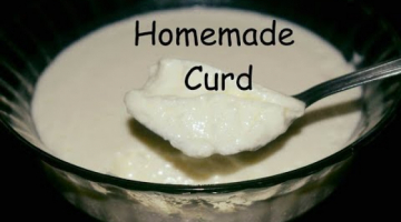Recipe How To Make Curd At Home with Tips   Easy Way To make homemade Curd